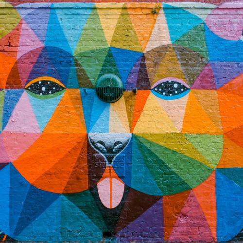 Mural Bear